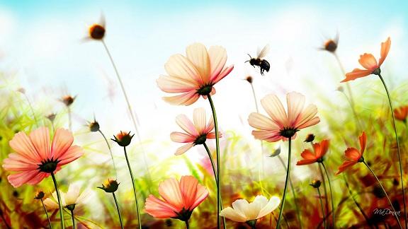 توصیه های پزشکی امام رضا(ع) درباره گرما و فصل تابستان
